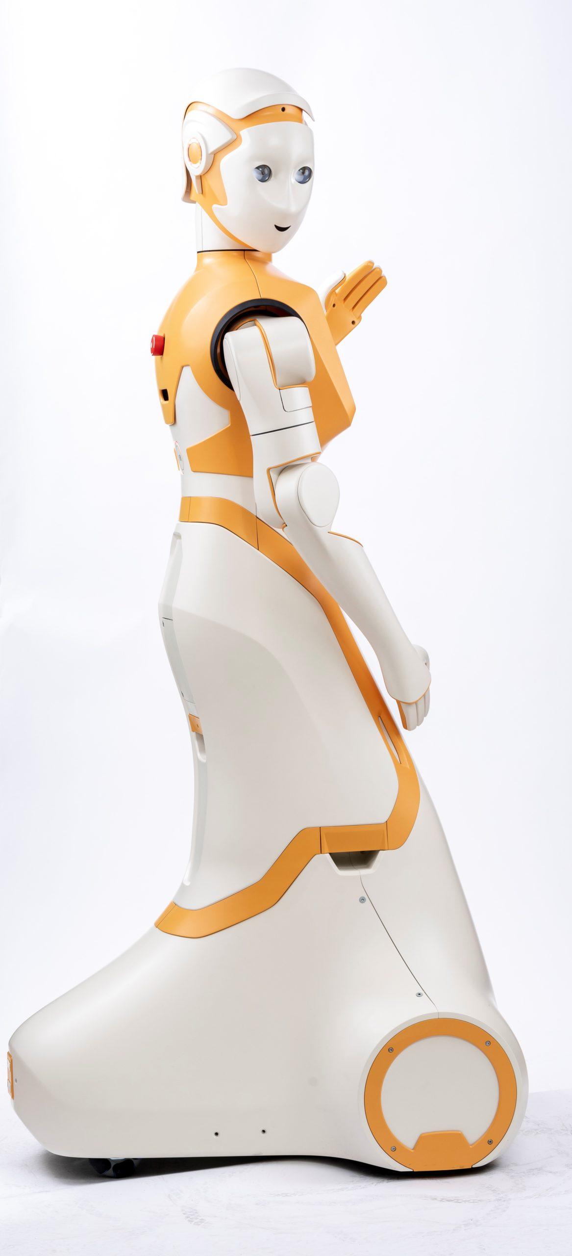 ARI-SPRING robot, Credit PAL Robotics